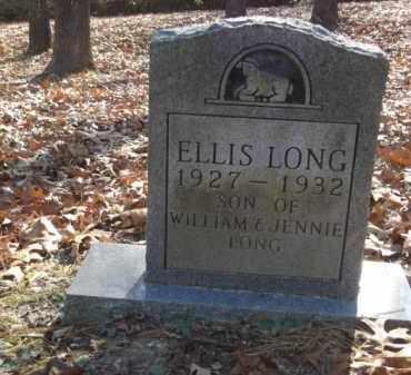 LONG, ELLIS - Izard County, Arkansas | ELLIS LONG - Arkansas Gravestone Photos