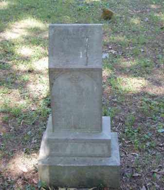 MYNATT, WILLIAM - Izard County, Arkansas | WILLIAM MYNATT - Arkansas Gravestone Photos