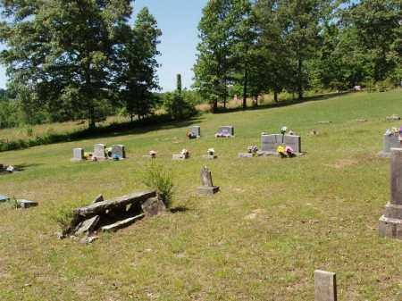 * OWENS OVERVIEW,  - Izard County, Arkansas |  * OWENS OVERVIEW - Arkansas Gravestone Photos