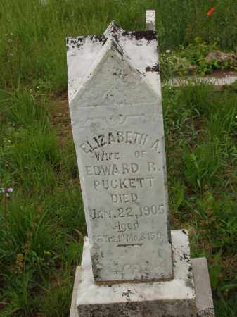PUCKETT, ELIZABETH ANN - Izard County, Arkansas | ELIZABETH ANN PUCKETT - Arkansas Gravestone Photos