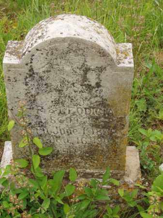 SCOTT, JACKSON - Izard County, Arkansas | JACKSON SCOTT - Arkansas Gravestone Photos