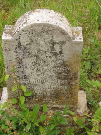 SCOTT, JACKSON - Izard County, Arkansas | JACKSON SCOTT - Arkansas Gravestone Photos