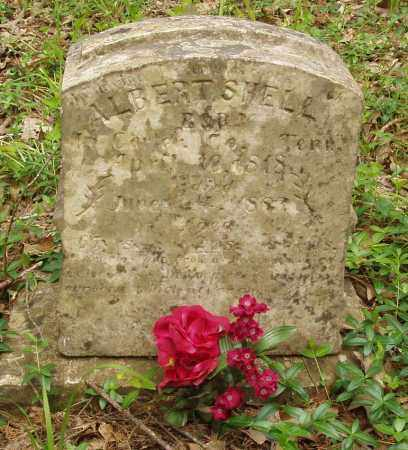 SHELL, ALBERT - Izard County, Arkansas | ALBERT SHELL - Arkansas Gravestone Photos