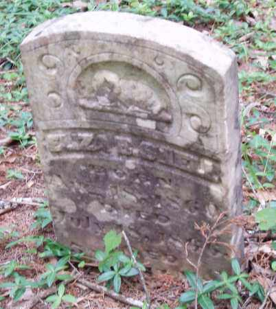 SHELL, ELIZA E - Izard County, Arkansas | ELIZA E SHELL - Arkansas Gravestone Photos