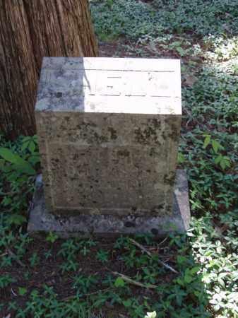 SHELL, MERA - Izard County, Arkansas | MERA SHELL - Arkansas Gravestone Photos