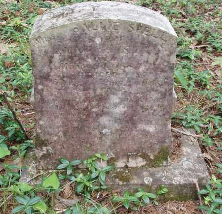SHELL, SALLIE - Izard County, Arkansas | SALLIE SHELL - Arkansas Gravestone Photos