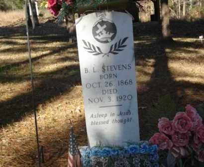 STEVENS, B. L. - Izard County, Arkansas | B. L. STEVENS - Arkansas Gravestone Photos