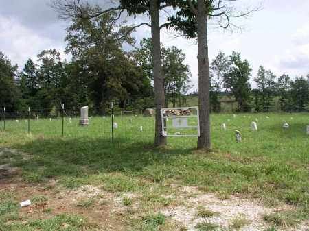*OVERVIEW,  - Izard County, Arkansas |  *OVERVIEW - Arkansas Gravestone Photos