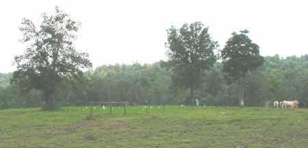 *OVERVIEW,  - Izard County, Arkansas |  *OVERVIEW - Arkansas Gravestone Photos