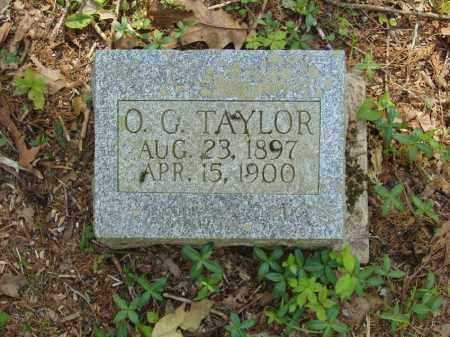 TAYLOR, O G - Izard County, Arkansas | O G TAYLOR - Arkansas Gravestone Photos