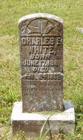 WHITE, CHARLES E - Izard County, Arkansas | CHARLES E WHITE - Arkansas Gravestone Photos