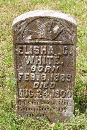 WHITE, ELISHA C - Izard County, Arkansas | ELISHA C WHITE - Arkansas Gravestone Photos