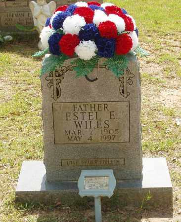 WILES, ESTEL E - Izard County, Arkansas | ESTEL E WILES - Arkansas Gravestone Photos
