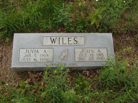 WILES, JUVIA A. - Izard County, Arkansas | JUVIA A. WILES - Arkansas Gravestone Photos
