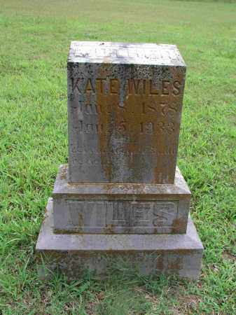 WILES, MARIA CATHERINE - Izard County, Arkansas | MARIA CATHERINE WILES - Arkansas Gravestone Photos