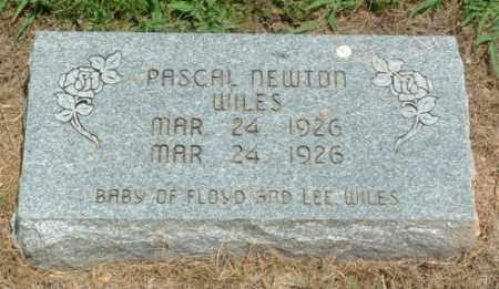 WILES, PASCAL NEWTON - Izard County, Arkansas | PASCAL NEWTON WILES - Arkansas Gravestone Photos
