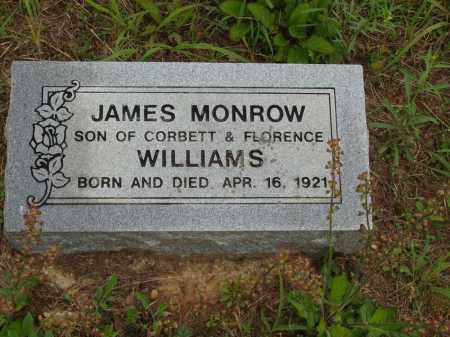 WILLIAMS, JAMES MONROW - Izard County, Arkansas | JAMES MONROW WILLIAMS - Arkansas Gravestone Photos