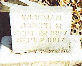 WISEMAN, JOSEPH M. - Izard County, Arkansas | JOSEPH M. WISEMAN - Arkansas Gravestone Photos