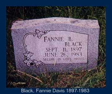 DAVIS BLACK, FANNIE BEATRICE - Izard County, Arkansas | FANNIE BEATRICE DAVIS BLACK - Arkansas Gravestone Photos