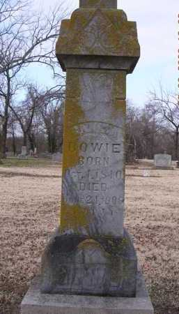 REEVES BOWIE, CANIZA - Jackson County, Arkansas | CANIZA REEVES BOWIE - Arkansas Gravestone Photos