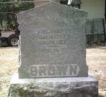 BROWN, W SPRIGG - Jackson County, Arkansas | W SPRIGG BROWN - Arkansas Gravestone Photos