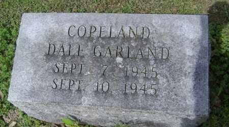 COPELAND, DALE GARLAND - Jackson County, Arkansas | DALE GARLAND COPELAND - Arkansas Gravestone Photos