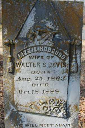 DAVIS (PIC2), LIZZIE - Jackson County, Arkansas | LIZZIE DAVIS (PIC2) - Arkansas Gravestone Photos