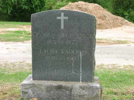 WADDILL DILLS, LAURA - Jackson County, Arkansas | LAURA WADDILL DILLS - Arkansas Gravestone Photos