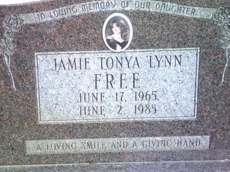 FREE, JAMIE TONYA LYNN - Jackson County, Arkansas | JAMIE TONYA LYNN FREE - Arkansas Gravestone Photos
