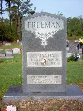 FREEMAN, AMANDA - Jackson County, Arkansas | AMANDA FREEMAN - Arkansas Gravestone Photos