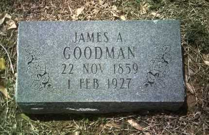 GOODMAN, JAMES A - Jackson County, Arkansas | JAMES A GOODMAN - Arkansas Gravestone Photos