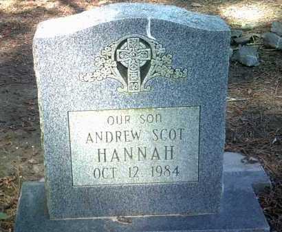 HANNAH, ANDREW SCOT - Jackson County, Arkansas | ANDREW SCOT HANNAH - Arkansas Gravestone Photos