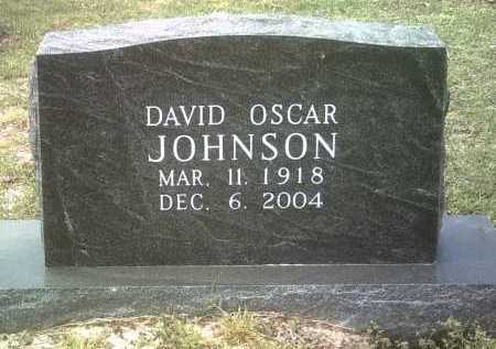 JOHNSON, DAVID OSCAR - Jackson County, Arkansas | DAVID OSCAR JOHNSON - Arkansas Gravestone Photos