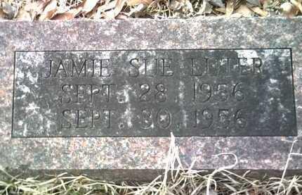LUTER, JAMIE SUE - Jackson County, Arkansas | JAMIE SUE LUTER - Arkansas Gravestone Photos