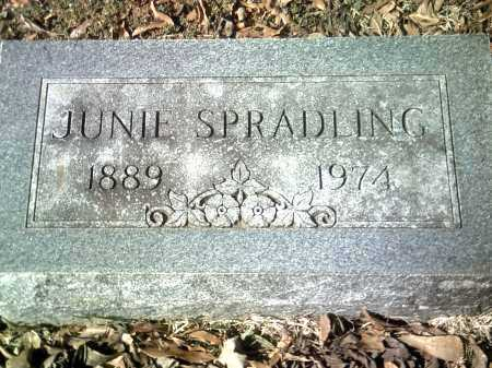 SPRADLING, JUNIE - Jackson County, Arkansas | JUNIE SPRADLING - Arkansas Gravestone Photos