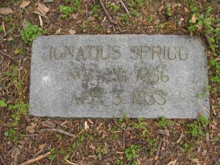 SPRIGG, IGNATIUS - Jackson County, Arkansas | IGNATIUS SPRIGG - Arkansas Gravestone Photos