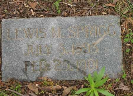 SPRIGG, LEWIS M - Jackson County, Arkansas | LEWIS M SPRIGG - Arkansas Gravestone Photos
