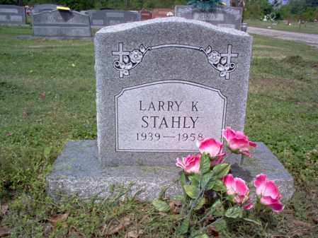 STAHLY, LARRY K - Jackson County, Arkansas | LARRY K STAHLY - Arkansas Gravestone Photos