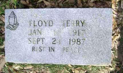 TERRY, FLOYD - Jackson County, Arkansas | FLOYD TERRY - Arkansas Gravestone Photos