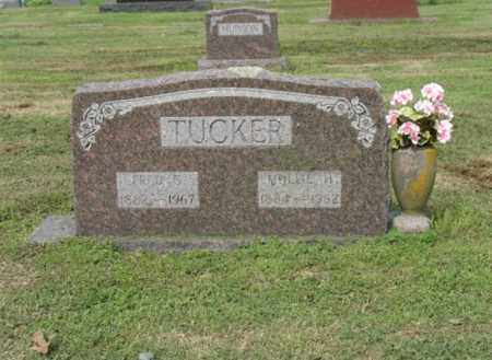 TUCKER, MOLLIE H - Jackson County, Arkansas | MOLLIE H TUCKER - Arkansas Gravestone Photos