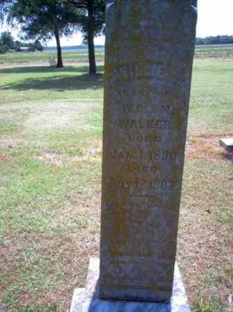 WALKER, WILLIE J - Jackson County, Arkansas | WILLIE J WALKER - Arkansas Gravestone Photos