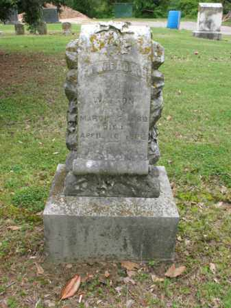 WATSON, FANNIE BOARD - Jackson County, Arkansas | FANNIE BOARD WATSON - Arkansas Gravestone Photos