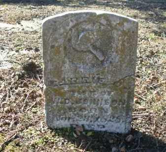 JOHNSON, CARRIE - Jefferson County, Arkansas | CARRIE JOHNSON - Arkansas Gravestone Photos