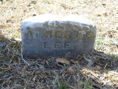 LEE, ALBERT E. - Jefferson County, Arkansas | ALBERT E. LEE - Arkansas Gravestone Photos