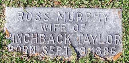 TAYLOR, ROSS - Jefferson County, Arkansas | ROSS TAYLOR - Arkansas Gravestone Photos