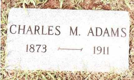ADAMS, CHARLES M - Johnson County, Arkansas | CHARLES M ADAMS - Arkansas Gravestone Photos