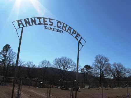 *ANNIES CHAPEL CEMETERY GATE,  - Johnson County, Arkansas |  *ANNIES CHAPEL CEMETERY GATE - Arkansas Gravestone Photos