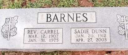 BARNES, SADIE - Johnson County, Arkansas | SADIE BARNES - Arkansas Gravestone Photos