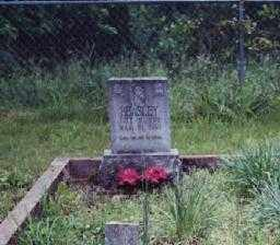 BEASLEY, ALEXANDER W. - Johnson County, Arkansas | ALEXANDER W. BEASLEY - Arkansas Gravestone Photos