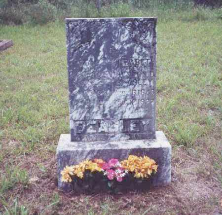 BEASLEY, ELIZABETH - Johnson County, Arkansas | ELIZABETH BEASLEY - Arkansas Gravestone Photos